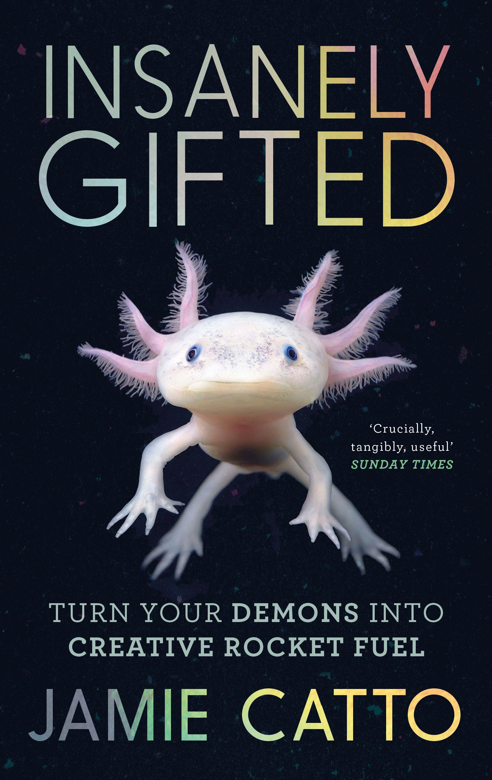 Insanely Gifted: Turn Your Demons into Creative Rocket Fuel by Jamie Catto, ISBN: 9781782118039