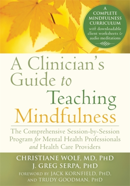 A Clinician's Guide to Teaching Mindfulness: The Comprehensive Session-By-Session Program for Mental Health Professionals and Health Care Providers by Christiane Wolf, ISBN: 9781626251397