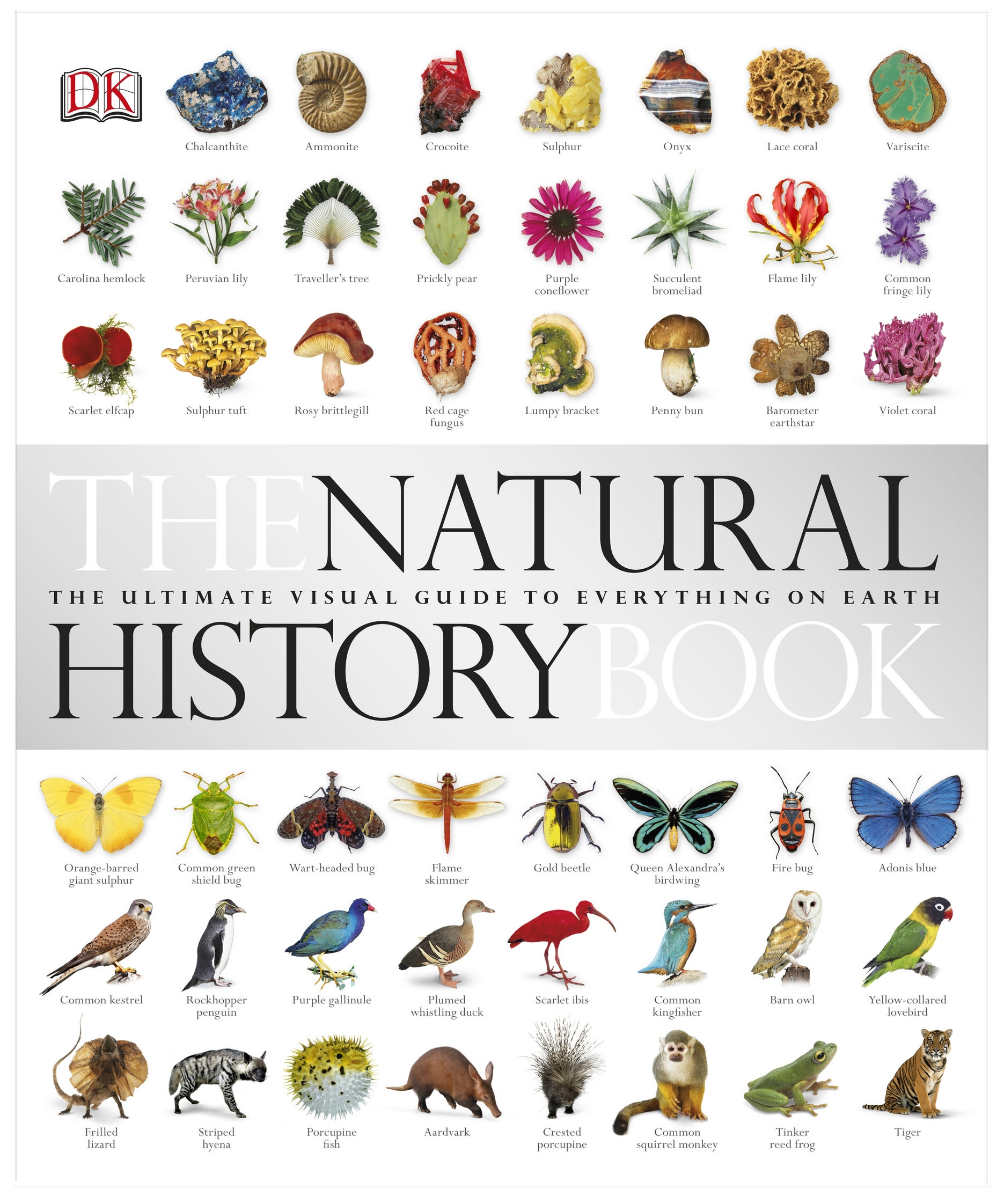 The Natural History Book by David Burnie, ISBN: 9781405336994