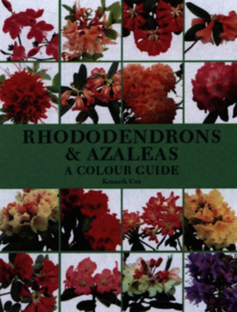 Rhododendrons and Azaleas by Kenneth Cox, ISBN: 9781861267849
