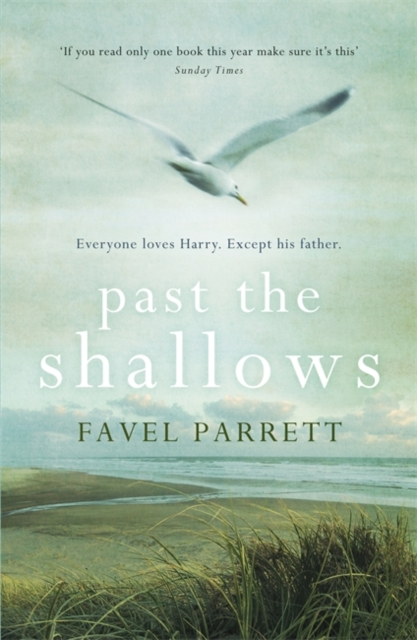Cover Art for Past the Shallows, ISBN: 9781848547506