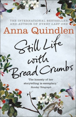 Cover Art for Still Life with Bread Crumbs, ISBN: 9780091954123