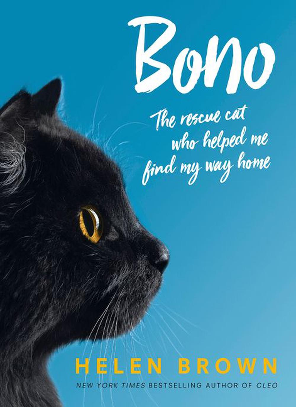 BonoThe Rescue Cat who Helped Me Find My Way Home