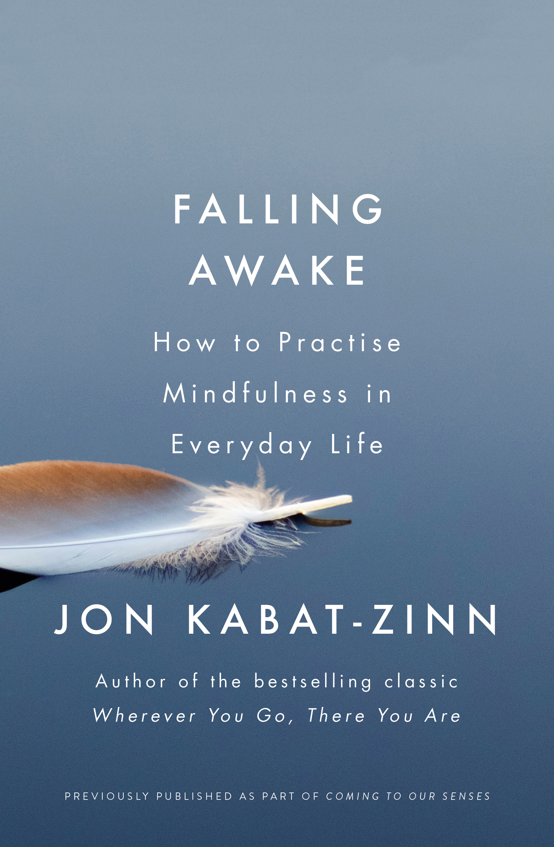 Falling AwakeHow to Practice Mindfulness in Everyday Life