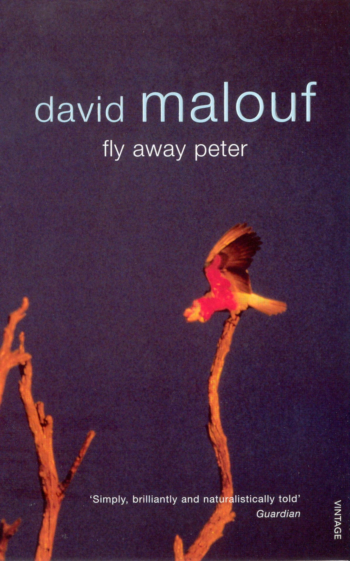 Cover Art for Fly Away Peter, ISBN: 9781409029861