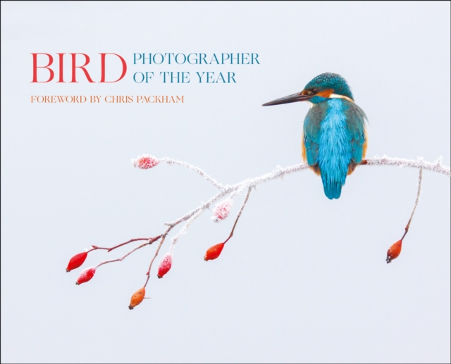 Bird Photographer of the Year 2017 by Bird Photographer of the Year, ISBN: 9780008229313