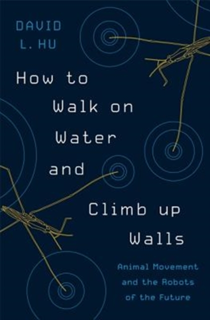 How to Walk on Water and Climb up WallsAnimal Movement and the Robots of the Future