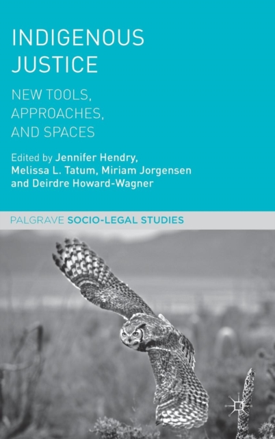 Indigenous Justice: New Tools, Approaches, and Spaces (Palgrave Socio-Legal Studies)