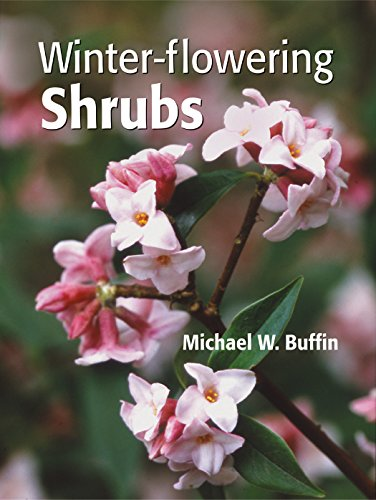 Winter-Flowering Shrubs by Michael W. Buffin, ISBN: 9780881927221