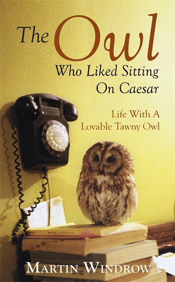 The Owl Who Liked Sitting on Caesar by Martin Windrow, ISBN: 9780593072714