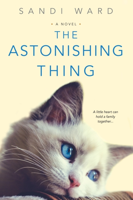 Astonishing Thing by Sandi Ward, ISBN: 9781496711113
