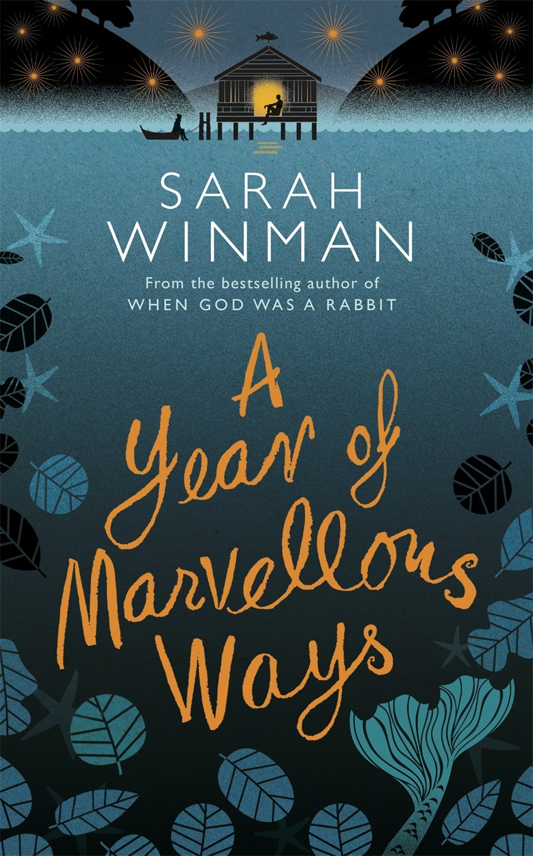 Cover Art for A Year of Marvellous Ways, ISBN: 9780755390915