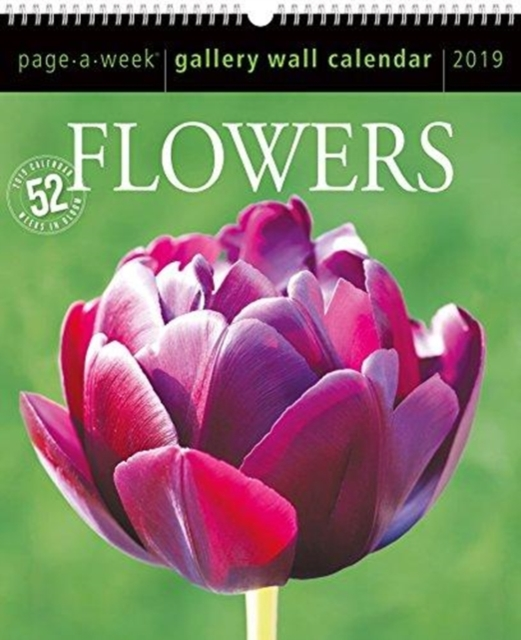 2019 Flowers Gallery Wall Page-A-Week Gallery Wall Calendar by Workman Publishing, ISBN: 9781523504954