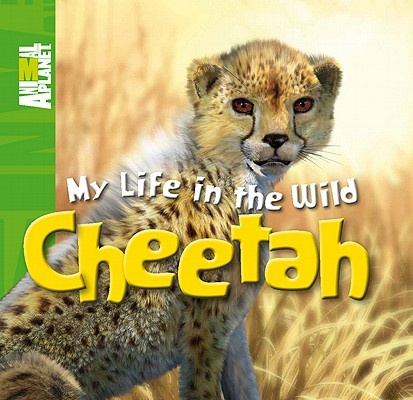 Cheetah by Meredith Costain, ISBN: 9780753467251