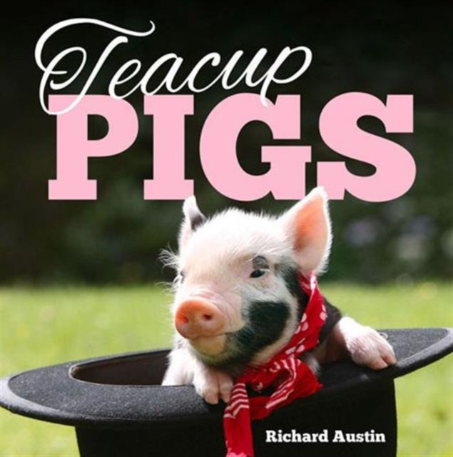 Teacup Pigs by Richard Austin, ISBN: 9781849535403