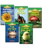 Life Cycles Science Vocabulary Readers 5-Book Set: Chick Life Cycle, Frog Life Cycle, Horse Life Cycle, Ladybug Life Cycle, and Sunflower Life Cycle