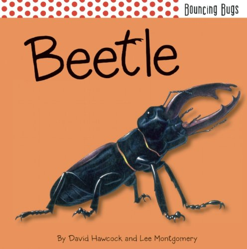 BeetleBouncing Bugs by David Hawcock,Lee Montgomery, ISBN: 9781608872138