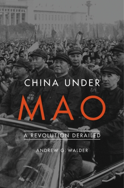 China Under MaoA Revolution Derailed
