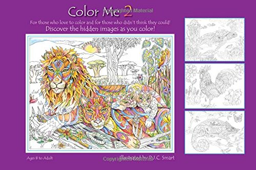 Color Me 2 (Color Me Your Way)