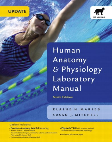 human anatomy and physiology lab manual exercise 19 Encourage students to prepare for lab by assigning recommended mastering a&p activities for each lab exercise  human anatomy & physiology lab manual.