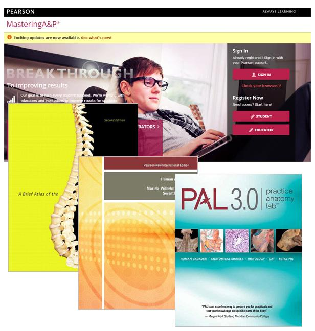 Booko: Comparing prices for Valuepack Human Anatomy PNIE + Pal CD + ...