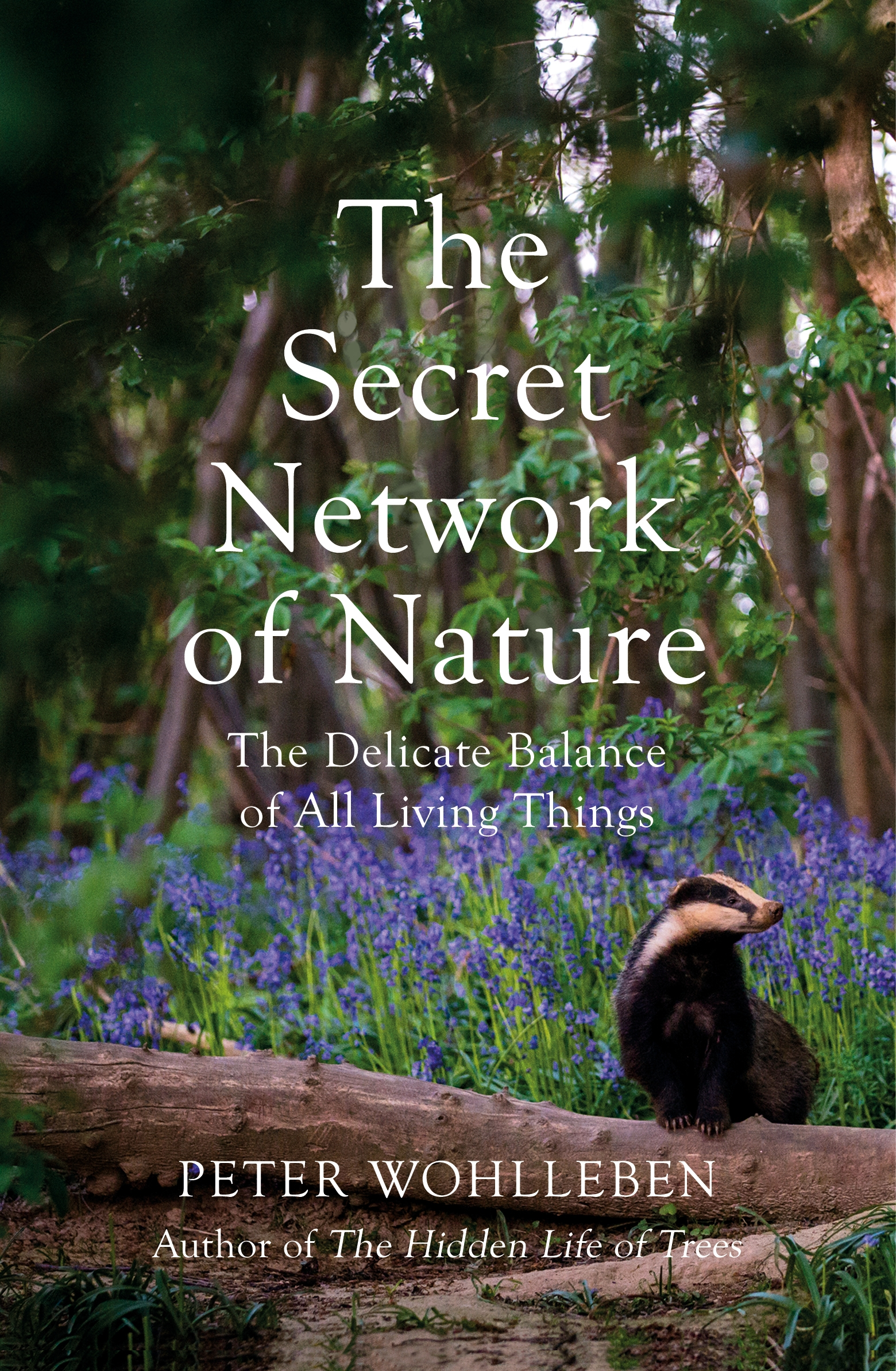 The Secret Network of Nature by Peter Wohlleben, ISBN: 9781847925251