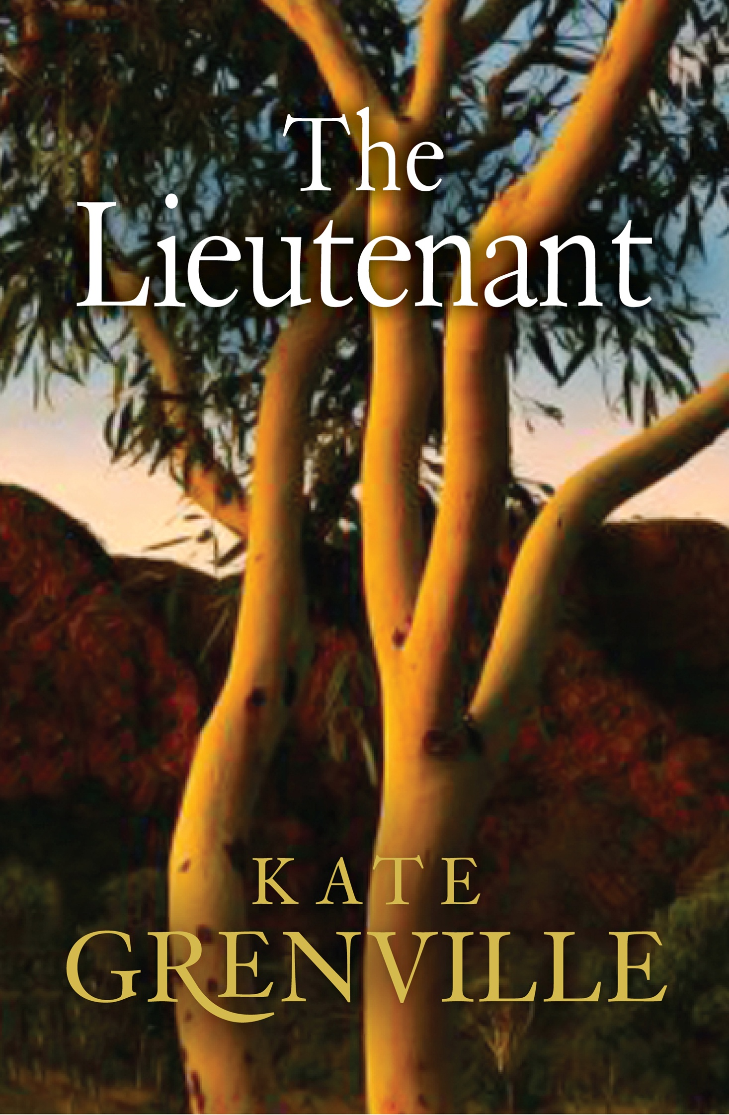 mate by kate grenville This story by kate grenville is about an old woman who looks like a witch and the impressions of a gang of kids who dream up all sorts of terrible crimes for this woman the woman is miss spears and she lives in number forty-two.