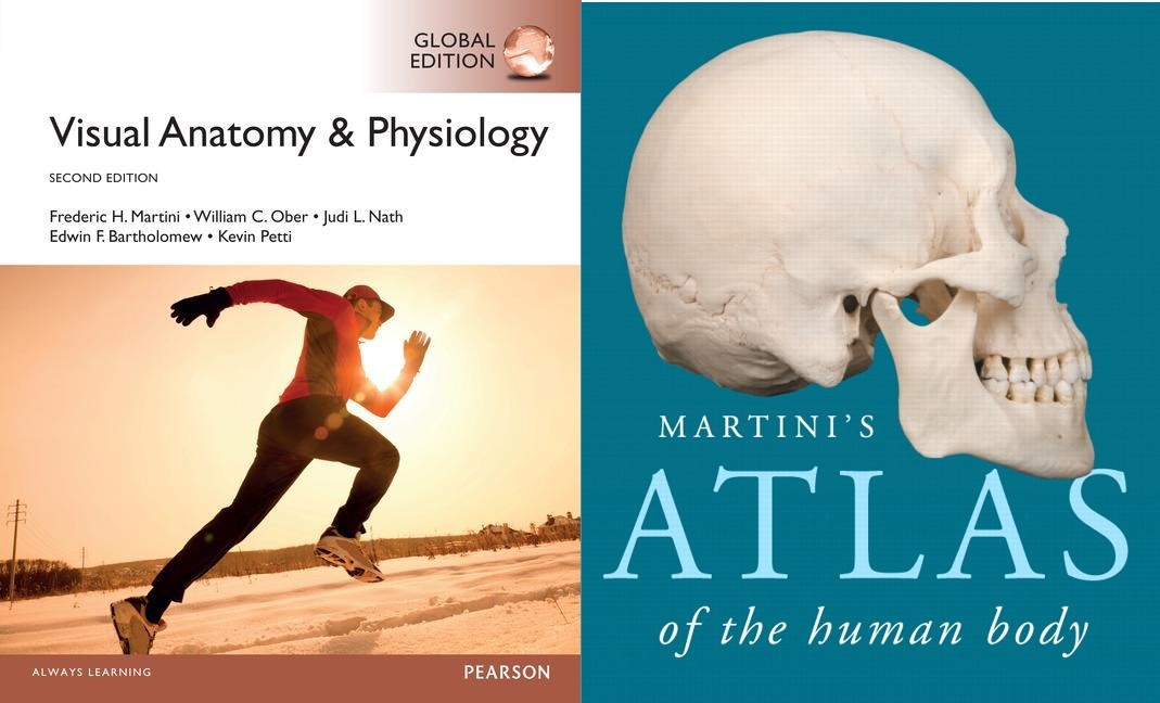 Value Pack Visual Anatomy & Physiology Global Edition + Get Ready for A &P + MasteringA &P with eText + Martini's Atlas of the Human Body