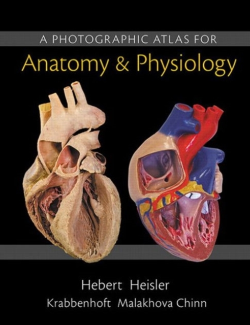 A Photographic Atlas for Anatomy & Physiology by Nora Hebert, ISBN: 9780321869258