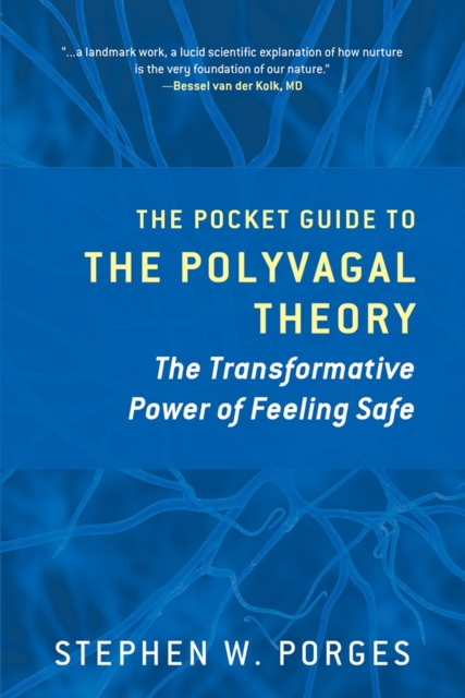 Clinical Insights from the Polyvagal Theory by Stephen Porges, ISBN: 9780393707878