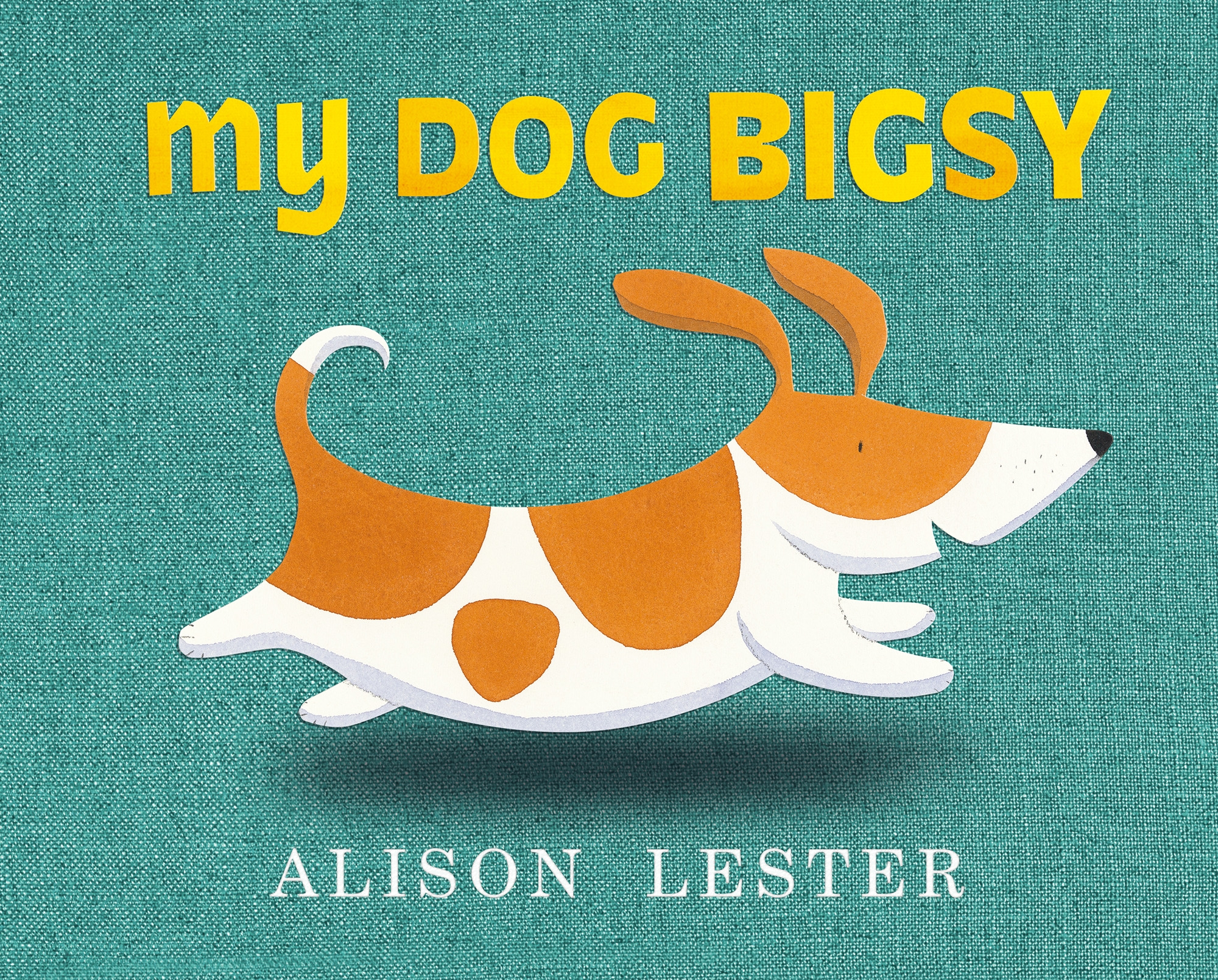 Cover Art for My Dog Bigsy, ISBN: 9780670078936