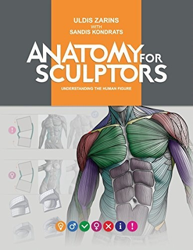 Anatomy For Sculptors