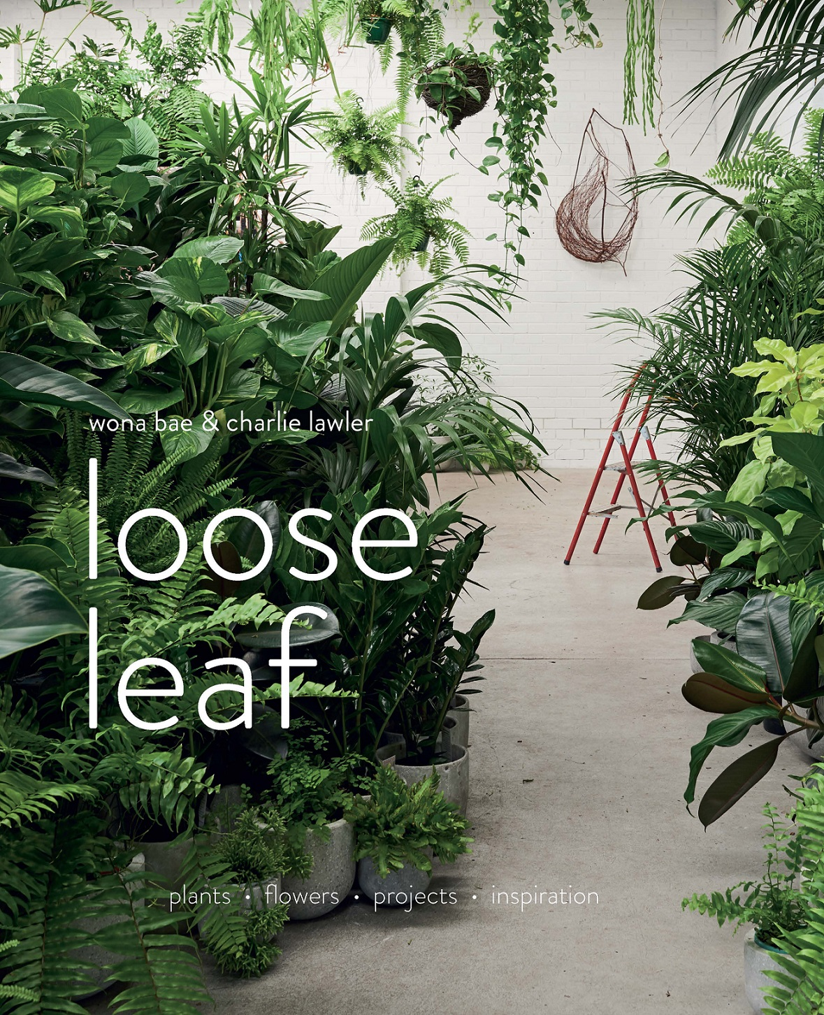 Loose LeafPlants Flowers Projects Inspiration