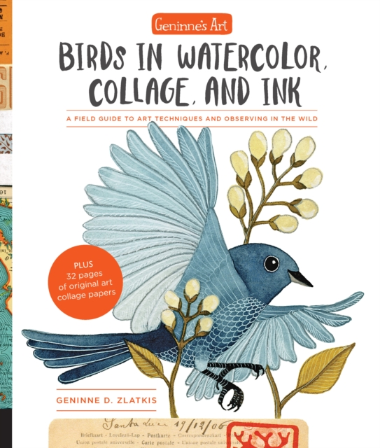 Geninne's Birds in Watercolor, Collage, and Ink: From observing in the field to creating in the studio