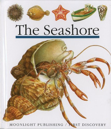 The Seashore (First Discovery Series)