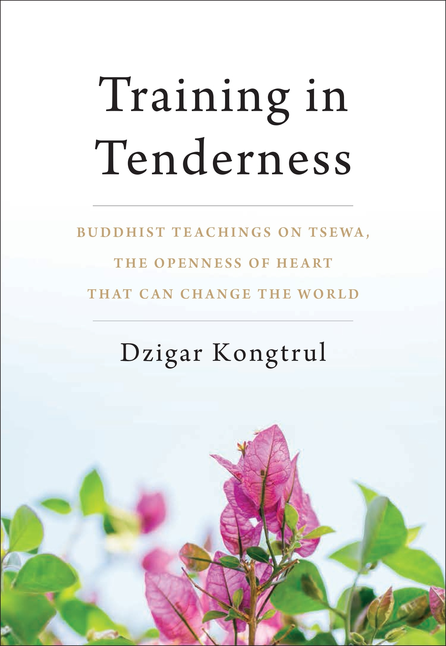 Training in Tenderness: Buddhist Teachings on Tsewa, the Openness of Heart That Can Change the World