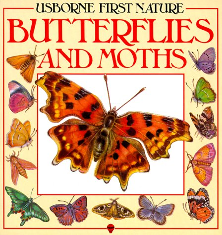 Butterflies and Moths (Usborne First Nature)