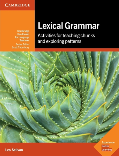 Lexical Grammar (Cambridge Handbooks for Language Teachers)