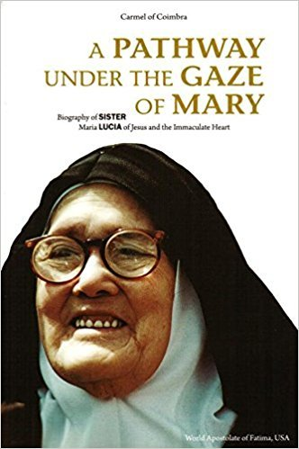 A Pathway Under the Gaze Of Mary - Biography of Sister Maria Lucia of Jesus and the Immaculate Heart.