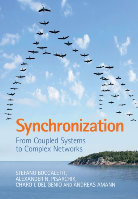 Synchronization: From Coupled Systems to Complex Networks