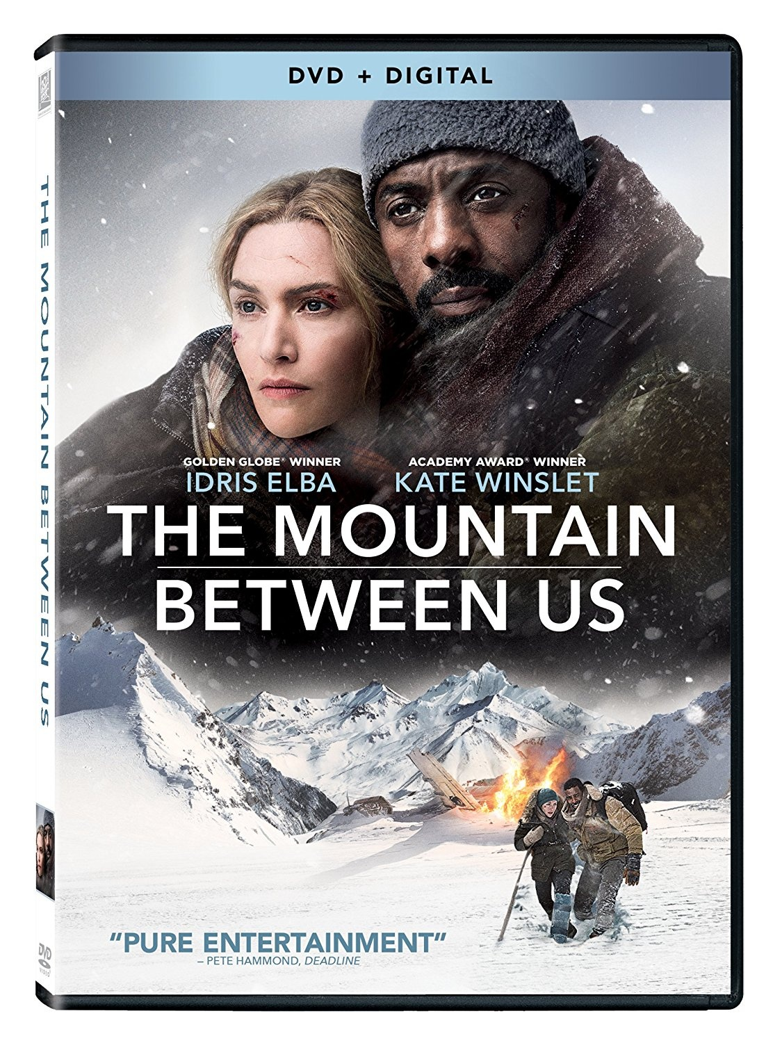 The Mountain Between Us [DVD]