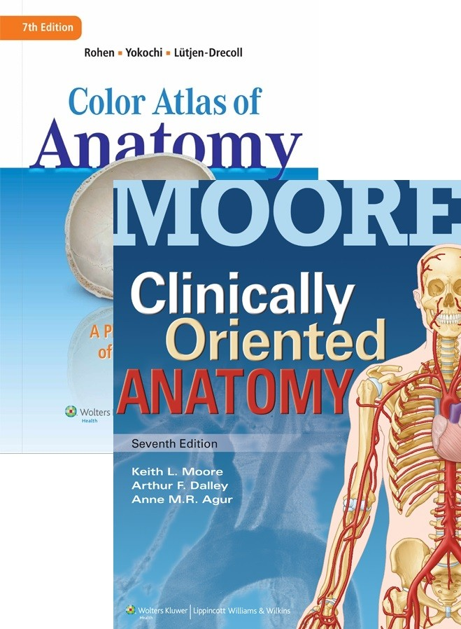 Booko: Comparing prices for Package of Rohens Color Atlas of Anatomy ...