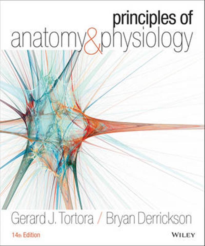 anatomy phys intro Introduction to the human body human beings are arguably the most complex organisms on this planet imagine billions of microscopic parts, each with its own identity, working together in an organized manner for the benefit of the total being.