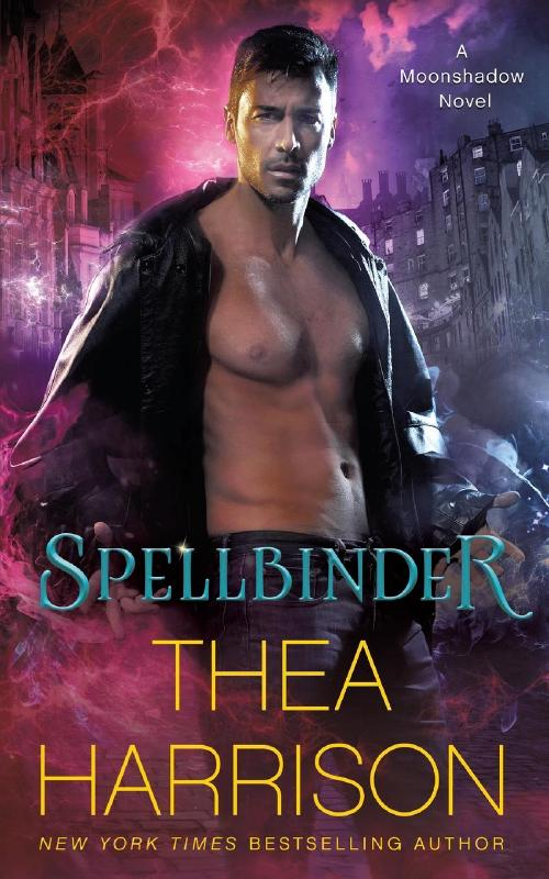 Spellbinder: Volume 2 (Moonshadow)