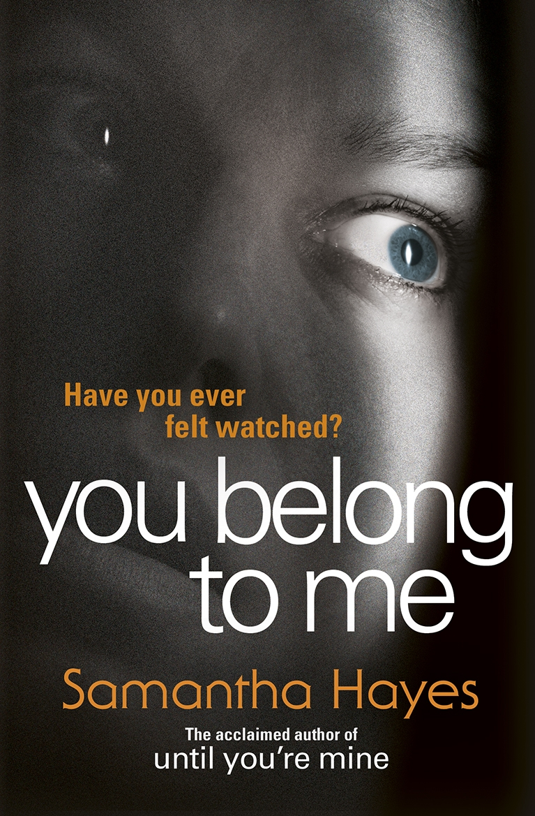 You Belong To Me by Samantha Hayes, ISBN: 9780099598855