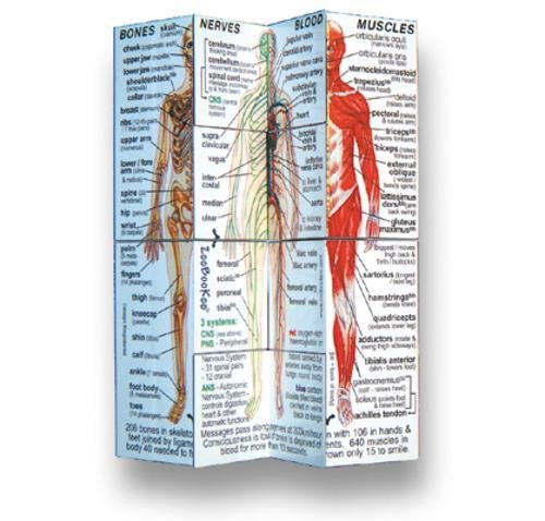 Human Body Cube Book (USA)