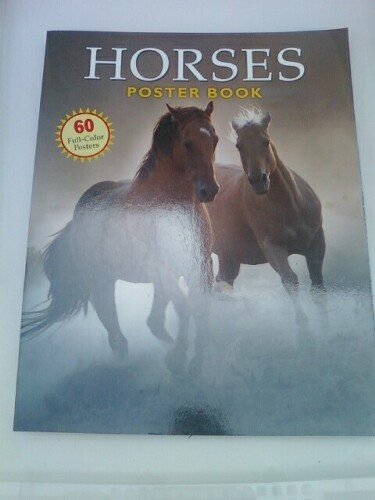 Horses Poster Book