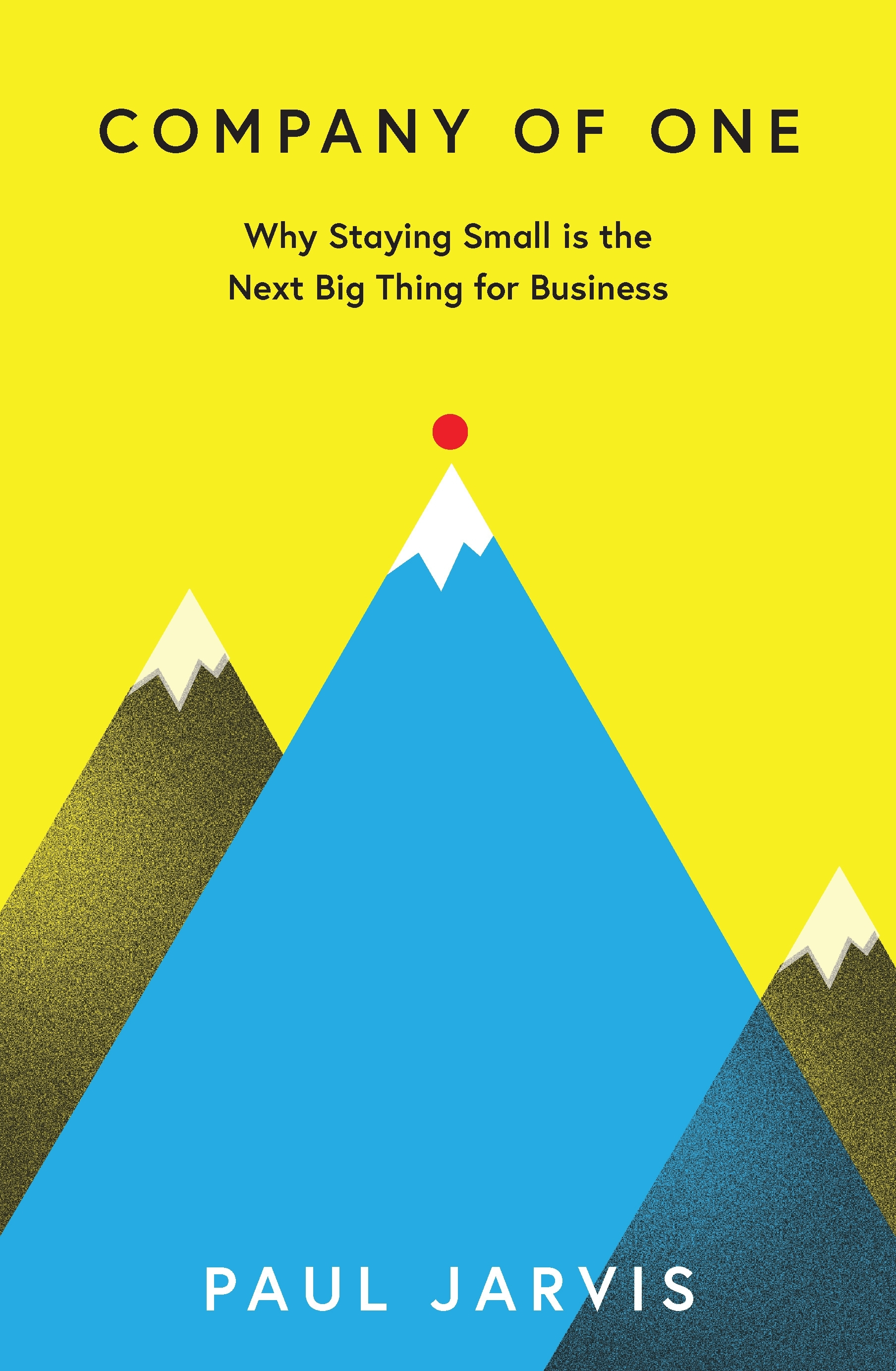 Company of OneWhy Staying Small is the Next Big Thing for Bus... by Paul Jarvis, ISBN: 9780241380222