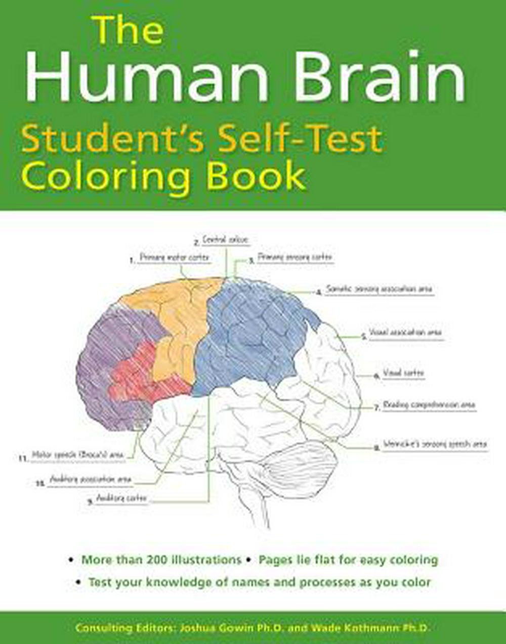 Booko: Comparing prices for The Human Brain Student\'s Self ...