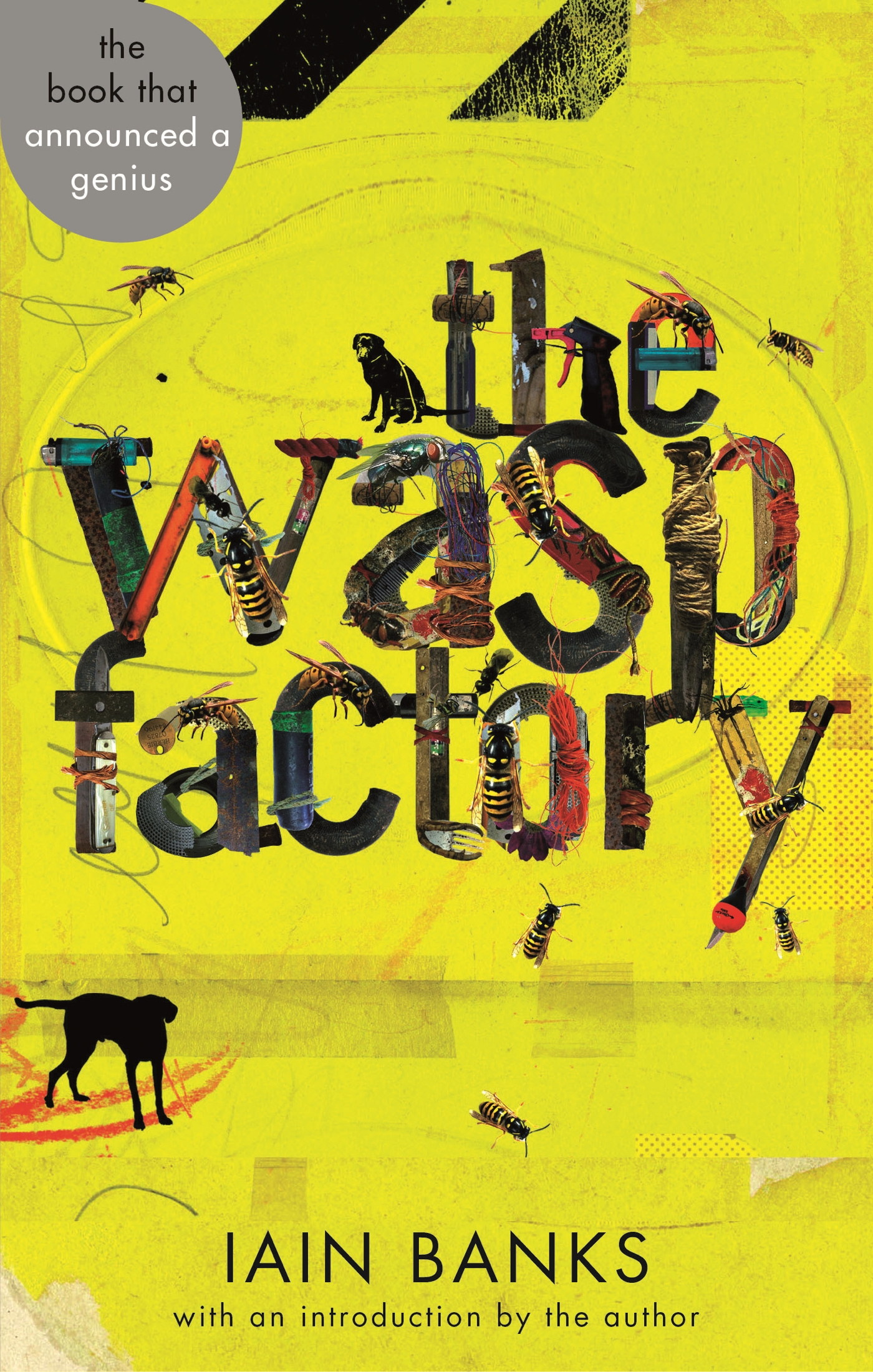 The Wasp Factory by Iain Banks, ISBN: 9780748109951